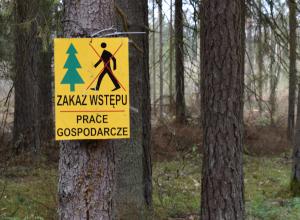 krytyka lasów państwowych zakaz wstępu do lasu