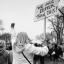 ekolodzy dla demokracji protest