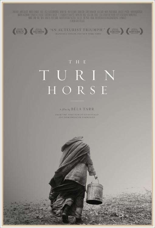 koń turyński